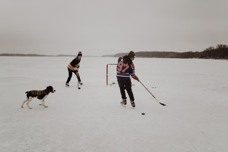 Two people playing ice hockey with a dog