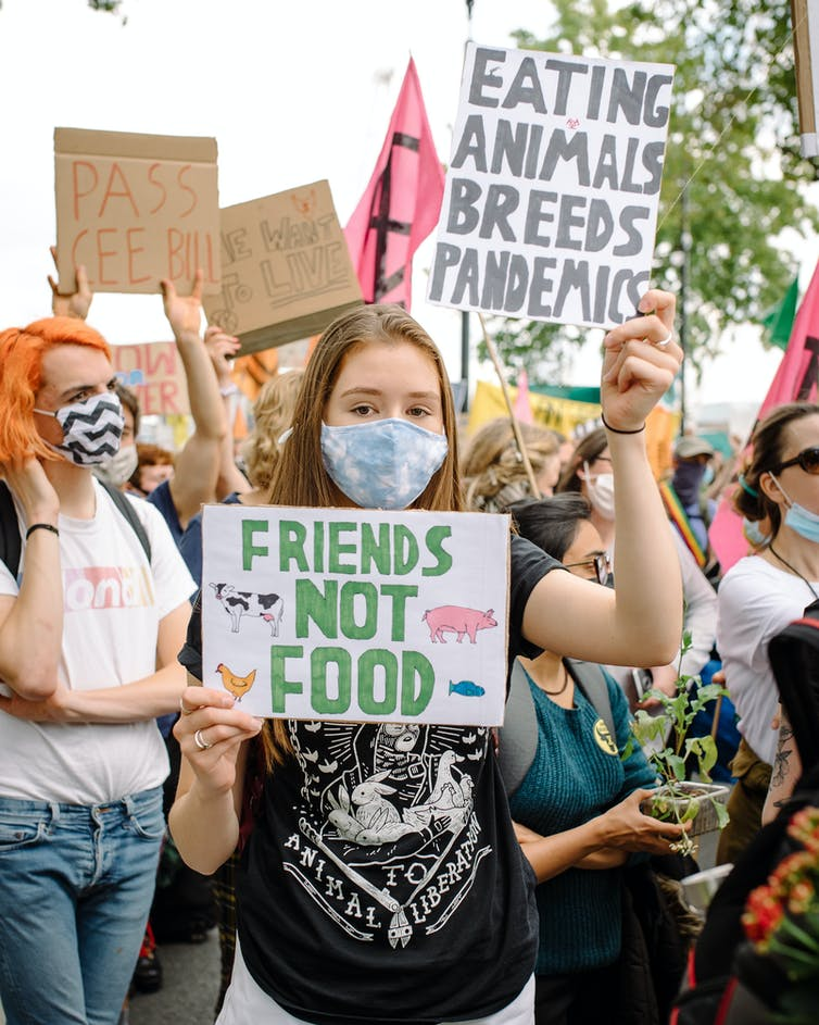Women wearing surgical masks and holding signs saying FRIENDS NOT FOOD and EATING ANIMALS BREEDS PANDEMICS