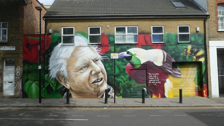 Street art of David Attenborough and a colourful bird