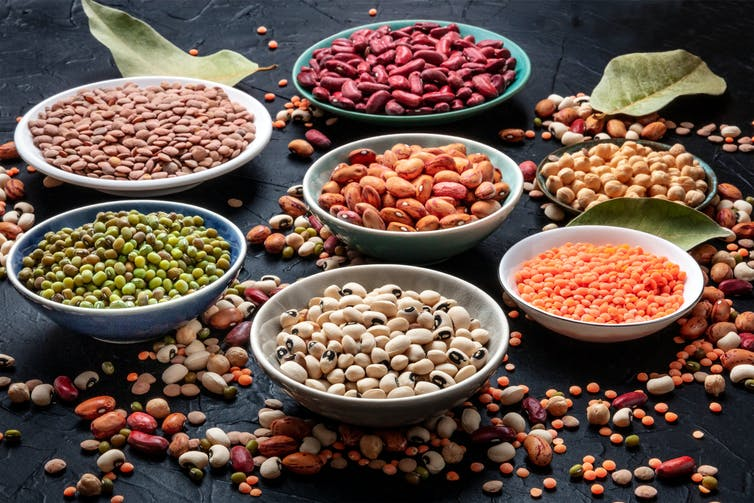 Bowls of different types of beans and lentils