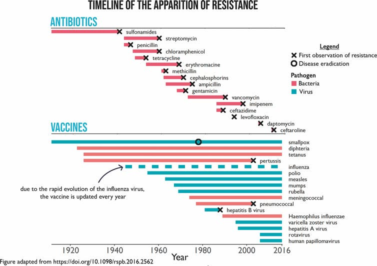 Why resistance is common in antibiotics, but rare in vaccines-2