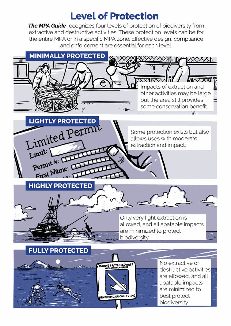 Infographic explaining the different levels of protection given to marine protected areas