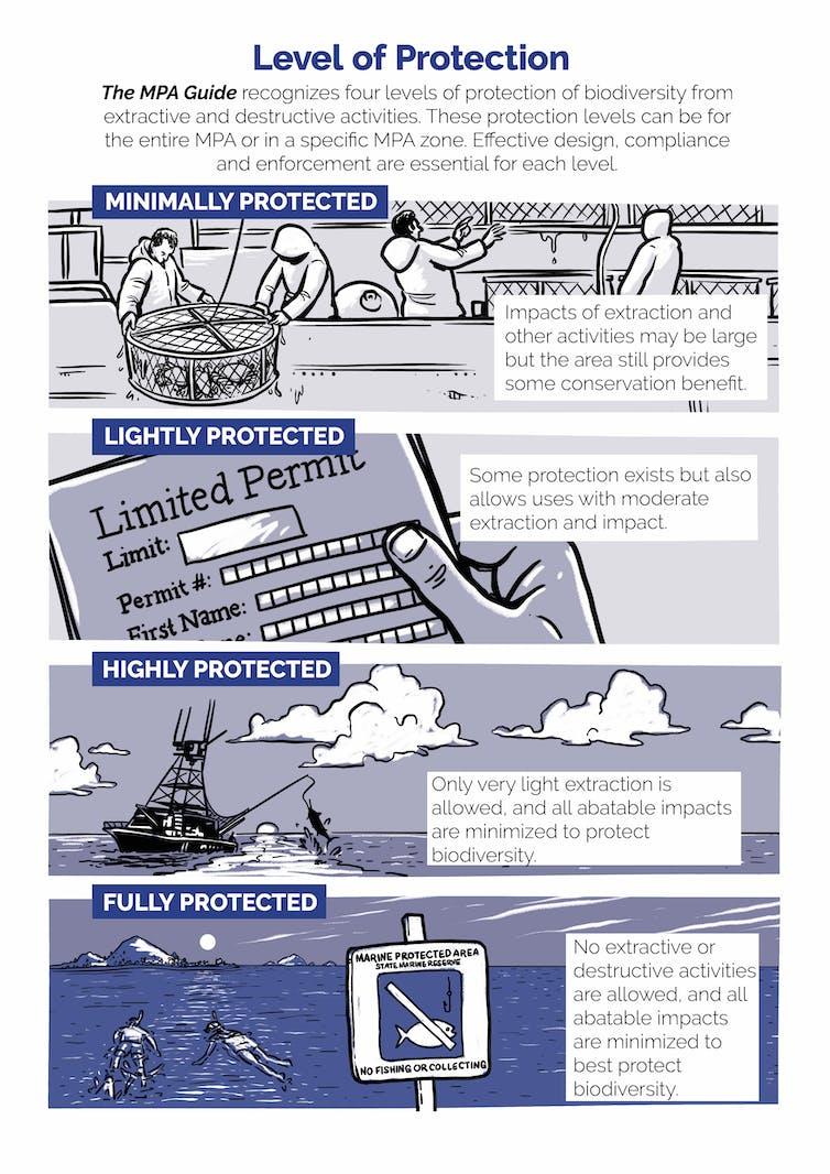 Infografis menjelaskan tingkatan berbeda perbedaan perlindungan yang bisa diberikana pada kawasan konservasi perairan.