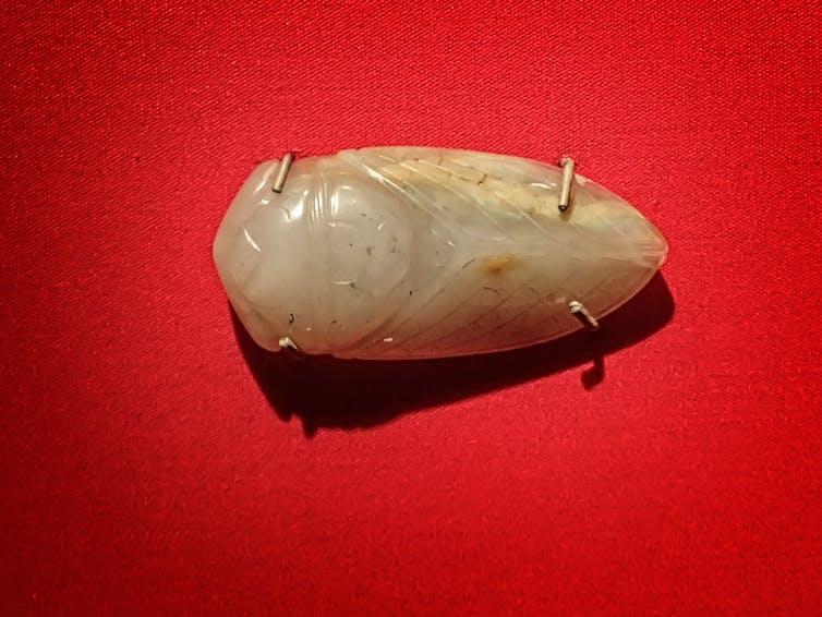 Jade cicada