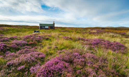 A small house sits on a peat bog.