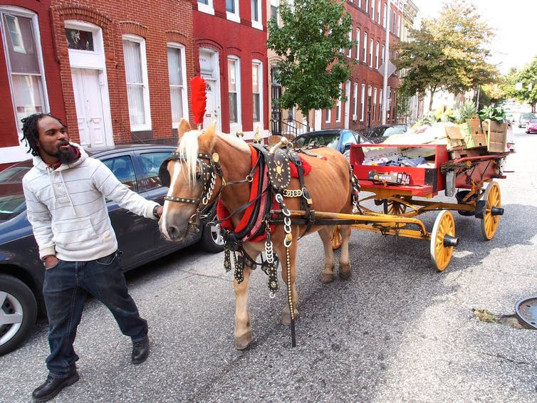 A food vendor pulls his horse through Baltimore.