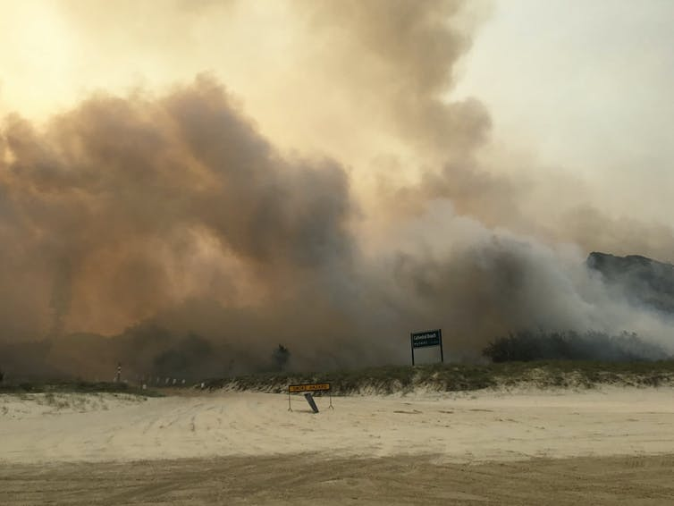 K'gari (Fraser Island) bush fires near the Cathedrals camping ground, November 2020.