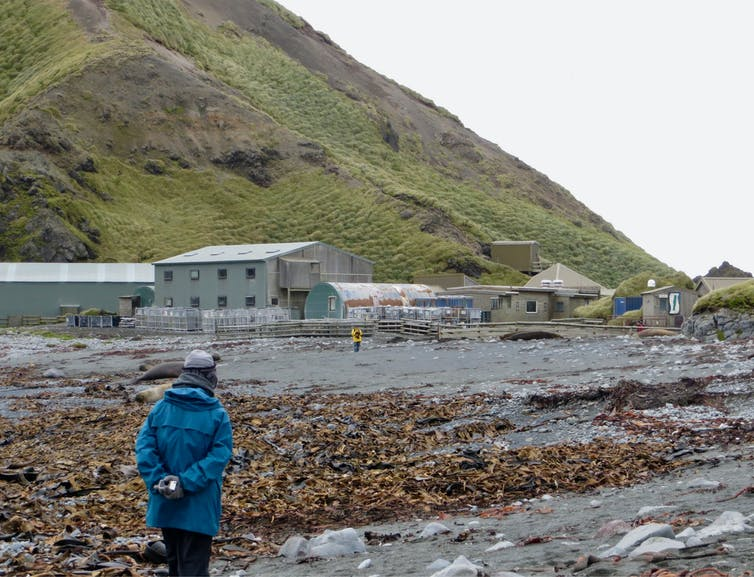 The Macquarie Island Research Base.
