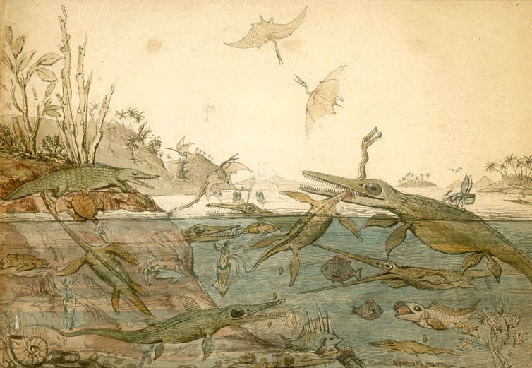 Watercolour painting of ancient marine reptiles, fish, ammonites, belemnites, and other prehistoric creatures in the ocean, with pterosaurs flying overhead.