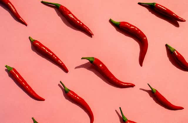 Red chili peppers arranged on a pink background.