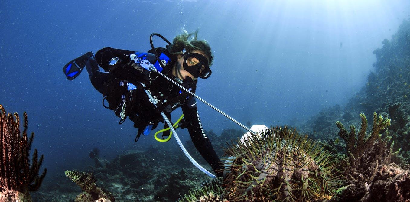 L'ouverture des sciences marines, au service d'un océan bien commun de l'humanité