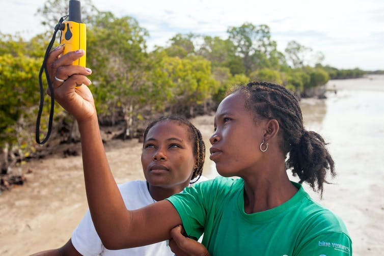 Two women holding a GPS unit aloft near a mangrove