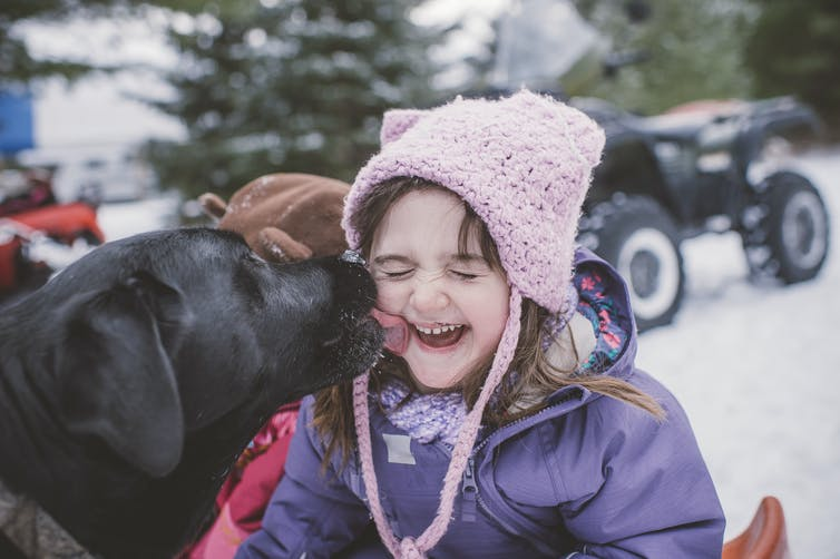 A dog licking a young girl's face.
