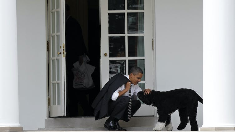 President Obama kneels and pets his dog outside the Oval Office.