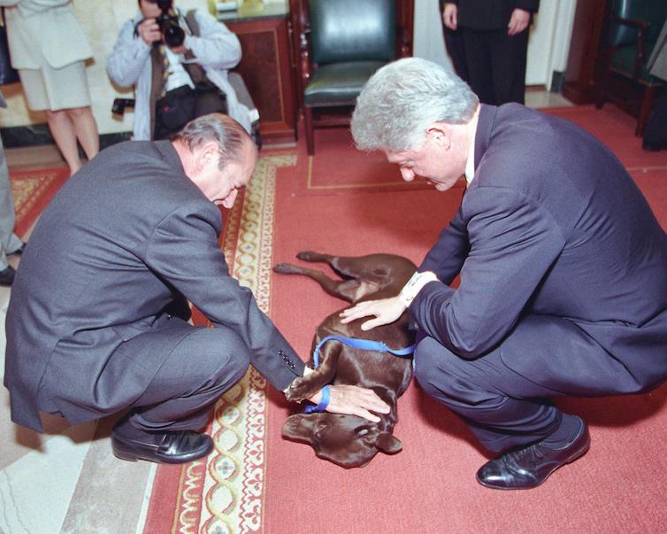 Chirac and Clinton squat to pet a Labrador Retriever.