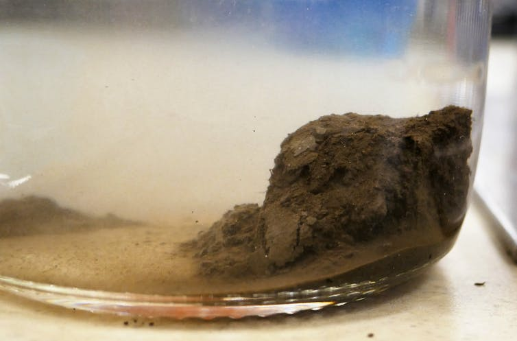 A beaker containing a sample of permafrost.