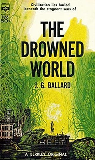 A book cover depicting a lone figure on a rooftop surrounding by vegetation and water.