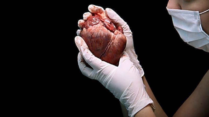 Así se repara un corazón 'herido'