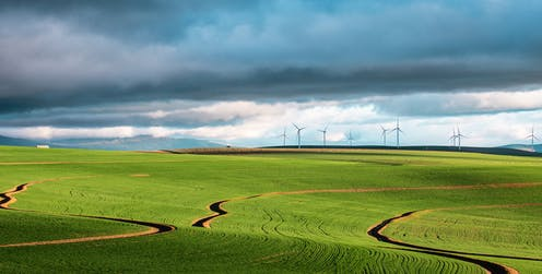 A green field with wind turbines on the horizon.