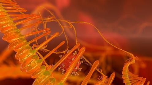 Artist impression of mRNA molecule