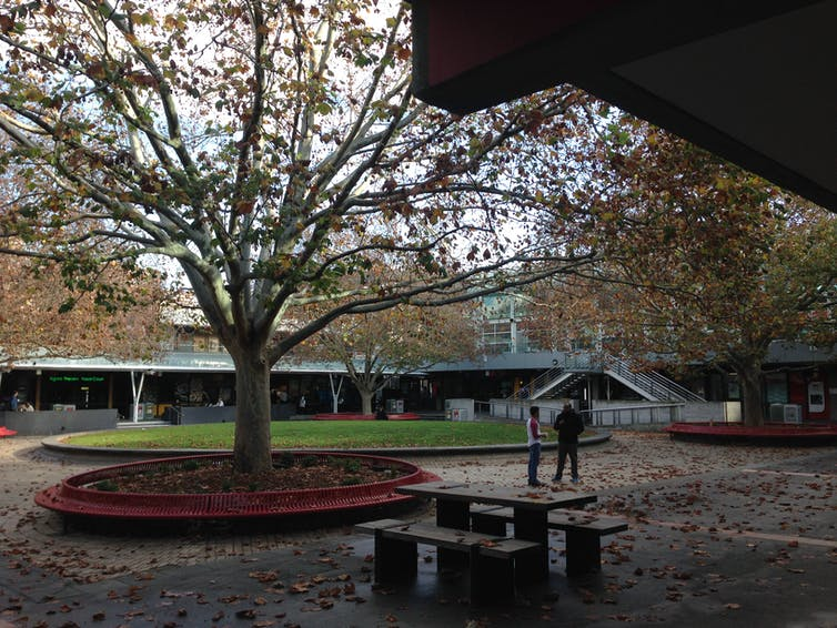 La Trobe University campus