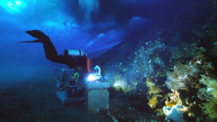 SCUBA diver accesses underwater recording equitpment