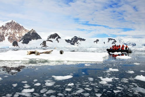 Inflatable boat full of tourists, watching seals on an ice berg