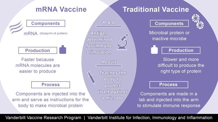 Description of the differences between mRNA and traditional vaccines