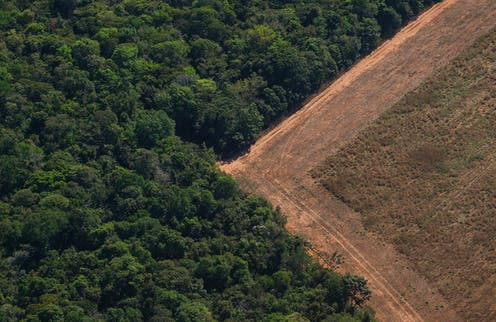 An aerial photo of a barren field next to a forest.