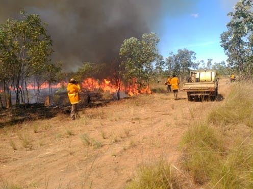Rangers practice controlled burning in a landscape.