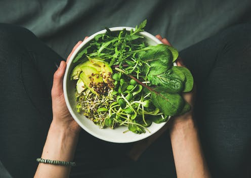 Someine holding out vegan bowl of food