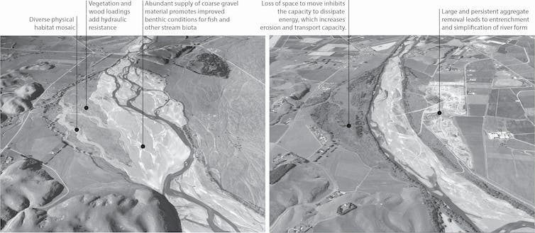 Images of river channels of the Ngaruroro River, and how they changed between 1950 and 2020.