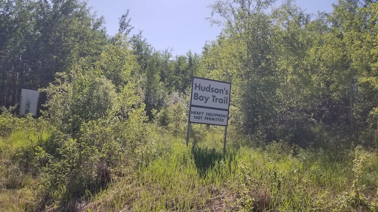 A sign that says Hudson Bay Trail by green trees.