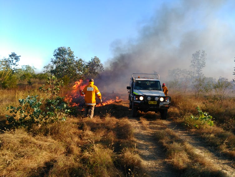 Land managers do prescribed burns to reduce wildfire risk.