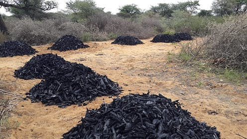 Why efforts to clean up charcoal production in sub-Saharan Africa aren't working
