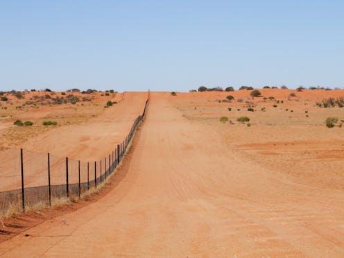 The dingo fence in the Strzelecki Desert.