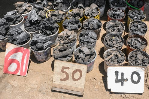 Kenya has been trying to regulate the charcoal sector: why it's not working