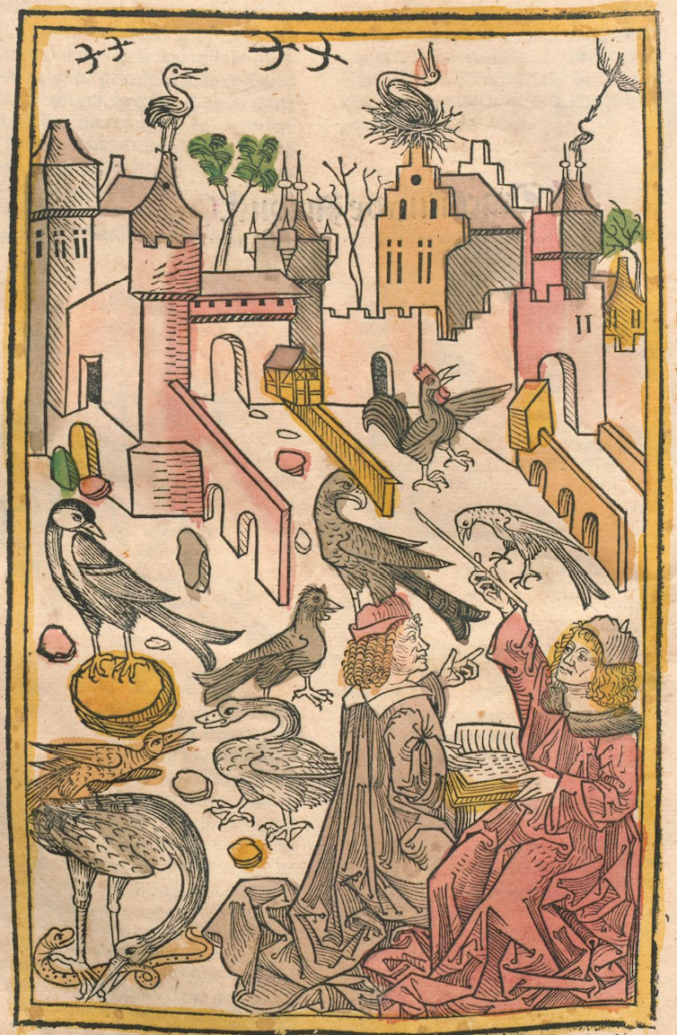 An engraving depicting a medieval city skyline filled with large birds.