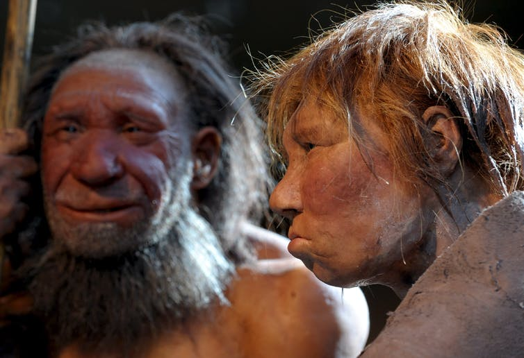 Reconstructions of a Neanderthal man and woman