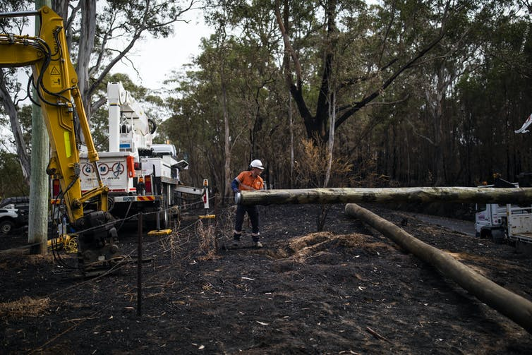 A man in a high-vis top holds a pole in blackened bushland.