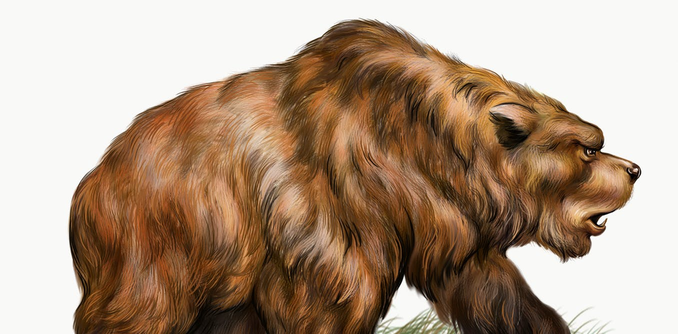 We sequenced the cave bear genome using a 360,000-year-old ear bone and had to rewrite their evolutionary history