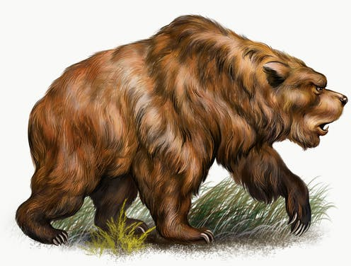 Cave bears are now extinct.