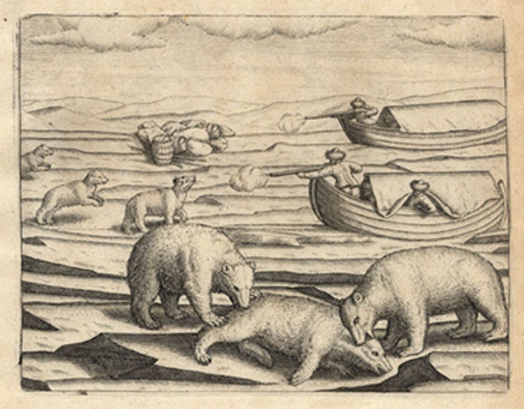 Engraving of many polar bears on ice with hunters in boats