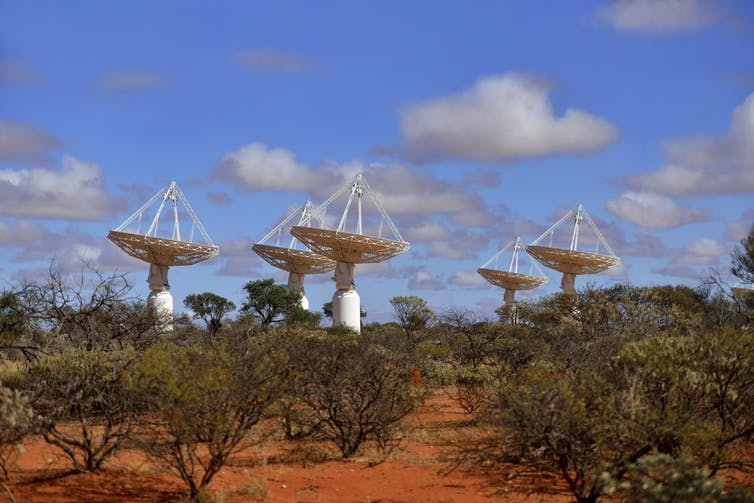 Several dish-shipped antenna in the desert, all pointing up towards the sky in daylight.