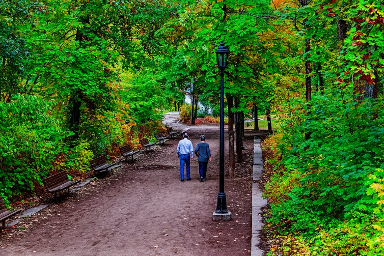 couple walking past benches along a tree-lined path
