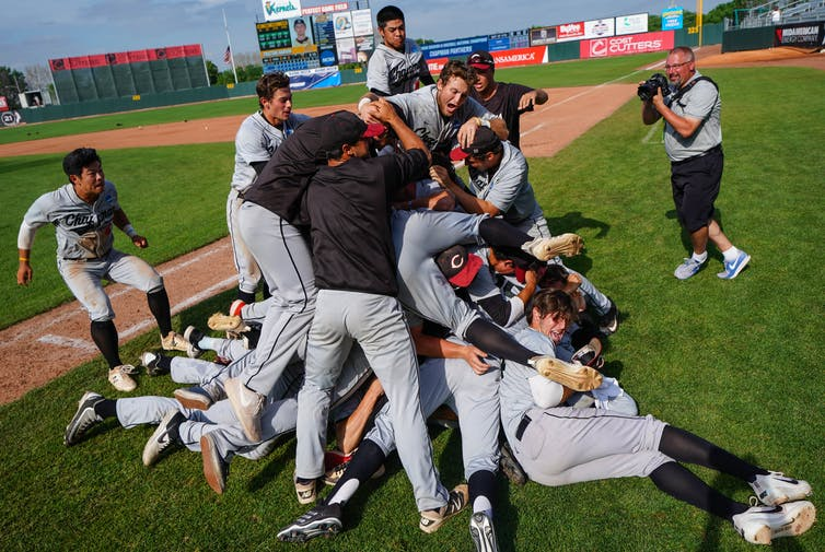 Baseball players celebrate on the field