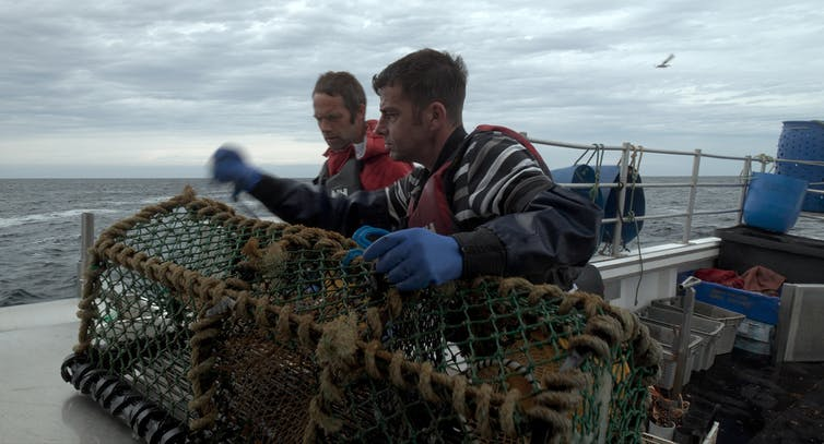 Two fishermen attend to a lobster boat aboard a boat.