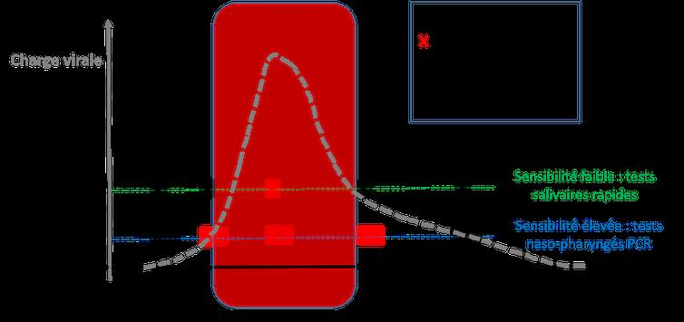 Figure 1 : Évolution de la charge virale au cours de l'infection et positivité des tests.