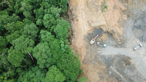 Aerial view of deforestation in the Bornean jungle.