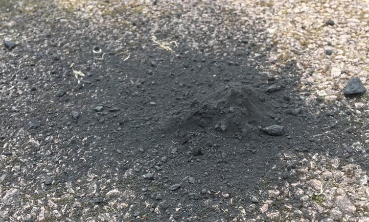 Image of the main mass of the meteorite on the driveway where it fell.